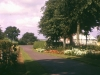 public-park