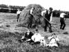 1908 Chapel Farm