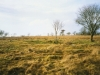 273-chapel-burial-mound