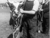 Annual Cattle Show (Robert Millar of Chapel farm)
