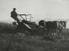 370 Bailing hay at Dykehead