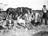 1905 Farming scene 1
