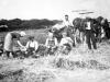 1905 Farming scene 2