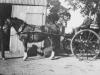 Gairdner (Lonsdale farm)1