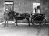 Gairdner (Lonsdale farm)5