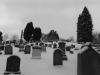 Graveyard in Snow